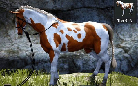 Buy XBox Tier6 Horse with Two-Seater