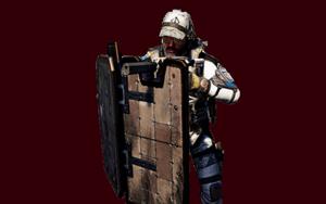Division 2 Tank Build PVE