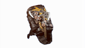 Buy Memento Exotic Backpack in Division 2